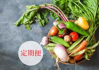 徳島産「自然栽培」&「無農薬・無化学肥料」おまかせ旬の野菜セット Mサイズ定期便 5.5㎏