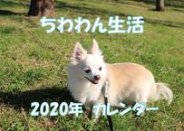 【送料無料】2020年『ちわわん生活』壁掛けカレンダー