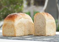 地粉食パン  ハーフサイズ