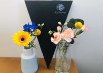【隔週 4回】 お花の定期便