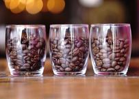 【送料無料】Light Roast 80g × 3種類 Specialty Coffee 飲み比べセット