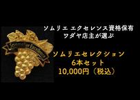 ソムリエセレクション 10,000円(6本)セット