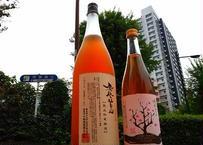 鳳凰美田 秘蔵梅酒 1800ml