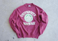 80's Hanes university Hawaii sweat shirt