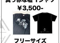 LAY ABOUT WORLD Tシャツ 2ndプレス