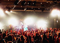 2nd LIVE DVD 『シビレバシル単独劇場TOUR『love the island』-TOUR FINAL-2017/09/10【日】恵比寿LIQUIDROOM』※送料無料