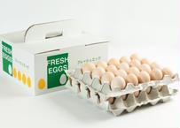 美黄卵さくら 40個入り化粧ケース