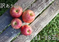 D8 サンふじ  5キロ箱(11~18玉) 家庭用(訳あり)