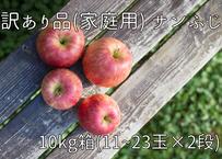 D9 サンふじ 10キロ箱(11~23玉×2段) 家庭用(訳あり)