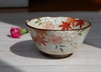 ご飯茶碗 雲錦(桜と紅葉)サイズ:中