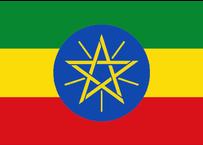 エチオピア イルガチェフェ アリーチャ 200g