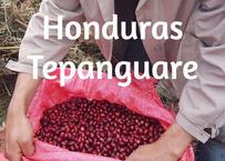 ホンジュラス・テパングアレ農園 250g