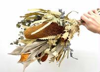 ドライスワッグ Banksia