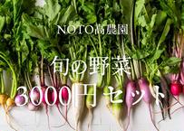 【通年販売】グランシェフ御用達の旬の野菜 3000円セット(税込・送料別)