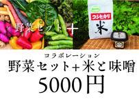 【数量限定】NOTO高農園 と応援コラボ 5000円セット(税込・送料別)