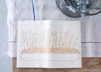 文庫本カバー『食パンからチューリップ』