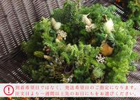 《送料無料》【etela】◆期間限定販売◆クリスマスリース ※直径約23cm(商品コード:TG300270)