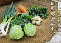 茅ヶ崎 島次郎農園「旬の無農薬野菜セット」(商品コード:TF050014)