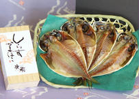 【北村水産】しらすかまぼことアジの干物セット(商品コード:TF130341)