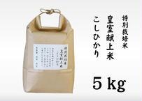 【笹屋】 特別栽培米 皇室献上米 こしひかり(5kg)(商品コード:TF180174)