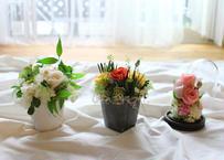 【Flower & Wreath design etela エテラ】オリジナルプリザーブドフラワー(商品コード:TG140082)