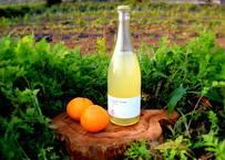 【ギフトボックス付き】ぶさいくワイン スパークリング BUSAIKU WINE Sparkling 2018 720ml