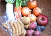 【初夏の有機野菜セット】たまねぎ、じゃがいも、にんじんなど【4〜5品目】