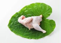 〔丸鶏を楽しみたいならコレ〕土佐ジロー中抜肉【冷蔵/冷凍】