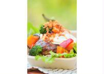 【砂丘の家 レイガーデンカフェ】鳥取和牛と県産ポークの自家製手ごねハンバーグロコモコ丼(ガーリック&オニオンソース)
