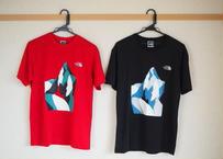 THE NORTH FACE オリジナルTシャツ