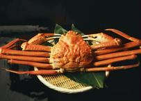 カナダ産 特大本ズワイ蟹 1kg