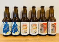 夏のおすすめビール3種類6本セット