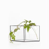 Argyle Vase