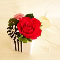 """NATURAL """"Fruitcake (RED)"""" ☆イニシャル、メッセージ入り☆ケーキのようなミニアレンジ"""