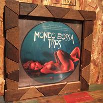 Handmade Vinyl Frame #11