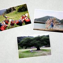 TOKIHIKO ART ポストカード3枚セット