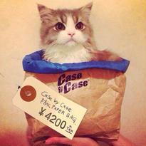 [CASE by CASE] 防水 PAPER BAG