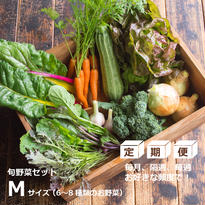 【定期便】HOMEMAKERS 旬野菜セットMサイズ (送料込)