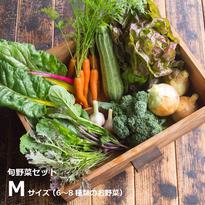 HOMEMAKERS 旬野菜セットMサイズ (送料込)