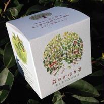 【虫と茶の森の物語】森のかほり茶