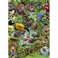 Flora & Fauna, Rainforest  :  Marion Wieczorek - 29617
