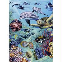 Flora & Fauna, Tropical Waters  :  Walter Wieczorek - 29623