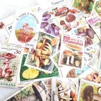 世界の切手 きのこ柄 使用済み切手15枚アソート