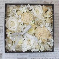 BOX FLOWER White