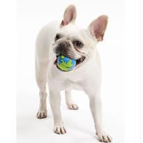 ミントの香り☆ワンコのボールの定番☆ Planet Dog オービータフ・ボール【ブルー】