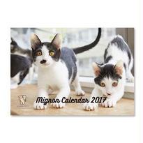ミグノンプラン 2017 保護犬猫写真カレンダー A4壁掛け