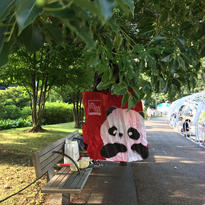 ☆限定☆【奇華餅家 / Kee Wah Bakery】  pandaエコバッグ