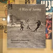 HELEN LEVITT:A Way of Seeing