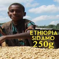 【SPECIALTY COFFEE】250g Ethiopia Sidamo G2 1.850-2.000m Fully Washed / エチオピア シダモ G2 フリーウォッシュト