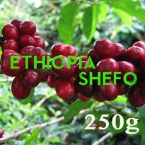【SPECIALTY COFFEE】250g Ethiopia Yirgachefe Shefo 1.600-2.000m Fully Washed / エチオピア イルガチェフ シェフォ F.W.